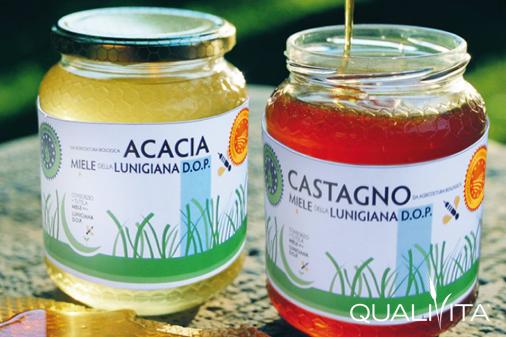 Miele della Lunigiana DOP foto-1
