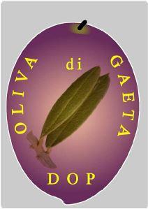 Oliva di Gaeta DOP