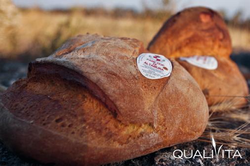 Pane di Altamura DOP foto-1