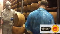 Sicurezza&Garanzia DOP - Parmigiano Reggiano DOP