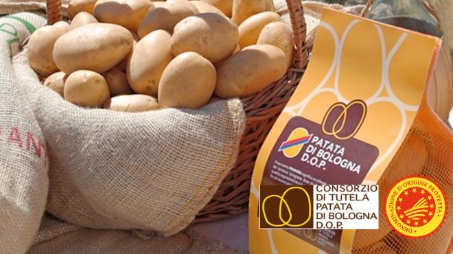 Numeri record per la Patata di Bologna DOP che cresce del +19,8%