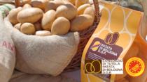 Patata di Bologna DOP, cresce la superficie: +17%