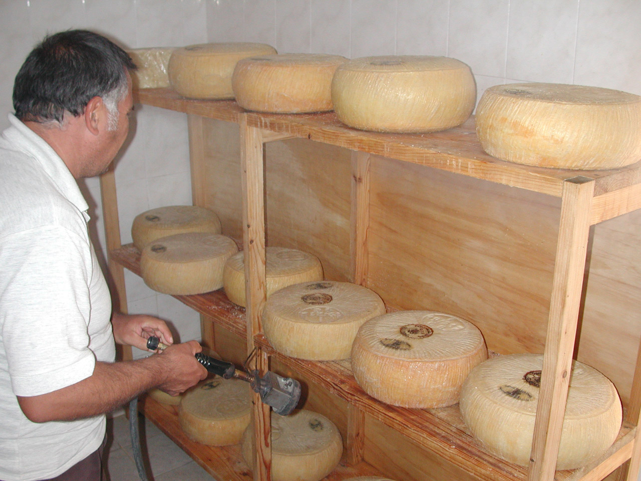 Pecorino Siciliano DOP foto-10