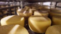 Il Pecorino Toscano DOP investe sui giovani chef