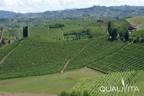 Piemonte DOP foto-1