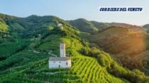 """""""Conegliano Valdobbiadene-Prosecco DOP, un milione di turisti con il riconoscimento Unesco"""""""