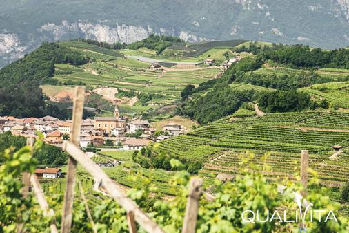 Trento DOP foto-1