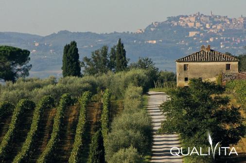Vin Santo di Montepulciano DOP foto-1
