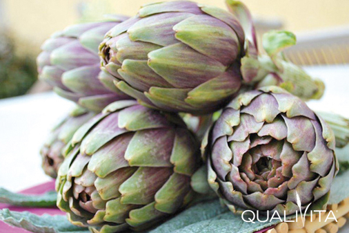Artichaut du Roussillon IGP foto-1