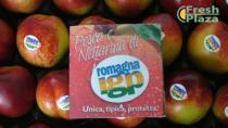 Pesche e Nettarine di Romagna IGP: modifica del disciplinare e promozione per lo sviluppo
