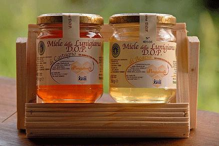 Miele della Lunigiana DOP foto-2