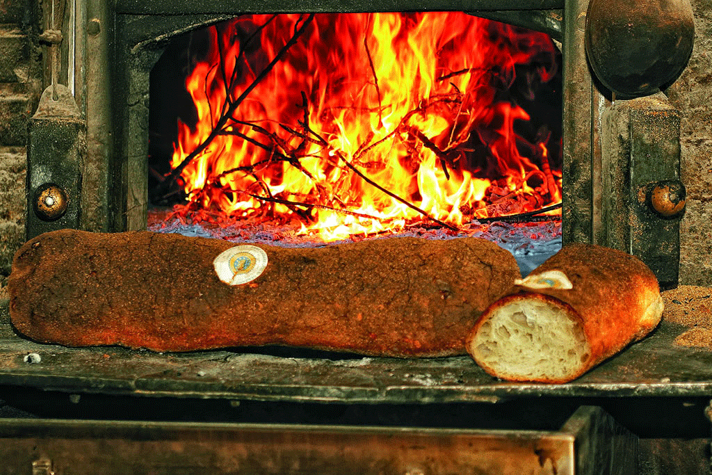 Pane Casareccio di Genzano IGP foto-2