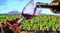 Legislazione, vini siciliani: nessun freno alla valorizzazione dei vitigni Nero d
