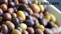 Ismea-Qualivita: food DOP IGP +28% in Liguria, Imperia cresce con l