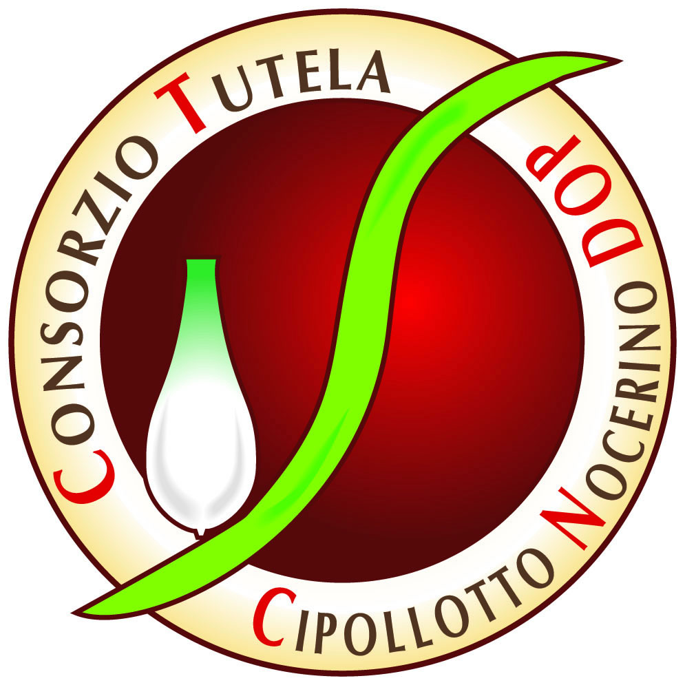 Consorzio di Tutela Cipollotto Nocerino DOP