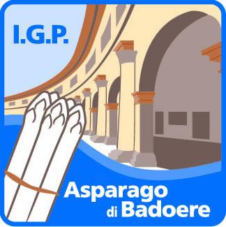 Asparago di Badoere IGP