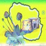 Cappero di Pantelleria IGP