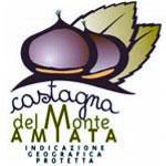 Castagna del Monte Amiata IGP