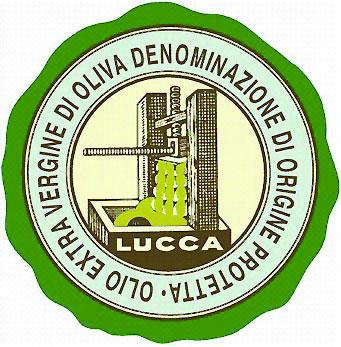 Lucca DOP – Olio EVO