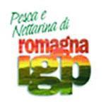 Pesca e Nettarina di Romagna IGP