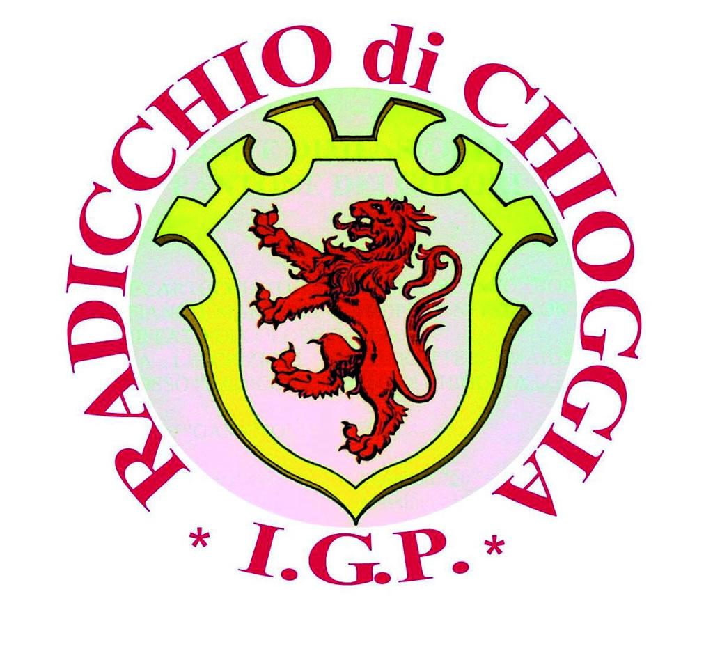 Radicchio di Chioggia IGP