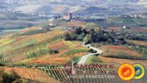 Vino DOP IGP: Piemonte Land traccia un bilancio della sua attività, con uno sguardo a sinergie future e export
