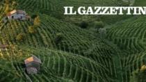 Friuli Colli orientali e Ramandolo, si allarga la tutela a tutti i produttori