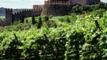 Vino, nel Lazio il fatturato aumenta grazie alle vigne dei Castelli Romani