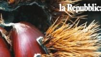Novembre, il mese della Castagna: Irpinia, leader mondiale nella produzione