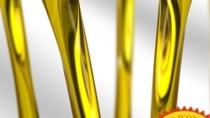 Aceite de Navarra DOP - Spagna