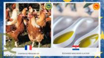 Registrati due nuovi prodotti: le IG Food EU raggiungono quota 1.349