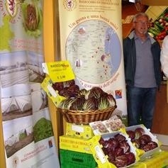 Il Radicchio di Chioggia IGP arriva nei supermercati della città lagunare