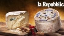 Castelmagno DOP, il formaggio delle mucche felici