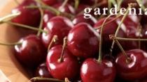 Amarene Brusche di Modena IGP: il dolce e il brusco