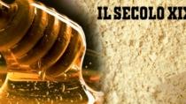 Addio a farina e miele di castagno DOP: produzione ridotta al 90%