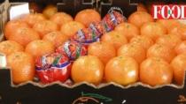 Dopo la ricca sagra salto di qualità per le Clementine del Golfo di Taranto IGP