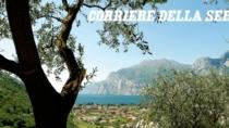 Olio DOP, sul Garda nel 2013 prodotti oltre 276mila litri