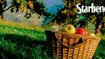 Mela Alto Adige IGP. Una perfetta simbiosi tra territorio e qualità