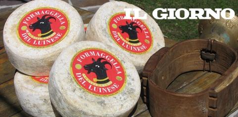 Dalla Formaggella del Luinese DOP la riscossa del latte di capra