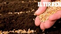 Alla ricerca delle radici contadine