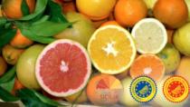 Agrumi di Sicilia: grandi o piccole, le arance sono una naturale difesa immunitaria