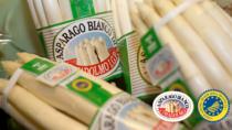 Al via la rassegna dedicata all'Asparago Bianco di Cimadolmo IGP
