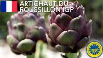Artichaut du Roussillon IGP – Francia