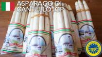 Asparago di Cantello IGP - Italia