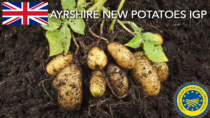 Ayrshire New Potatoes IGP - Regno Unito