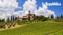 Enoturismo, un patrimonio da valorizzare con i Consorzi di tutela del vino