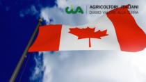 CETA: CIA, cresce export verso Canada, +13% formaggi made in Italy