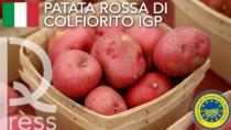 Salgono a 1253 i prodotti Food europei ad Indicazione Geografica