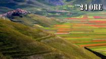 Lenticchia di Castelluccio di Norcia IGP, ultima chiamata per la semina
