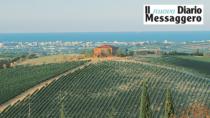 Consorzio Vini di Romagna: entra il Colli di Rimini DOP